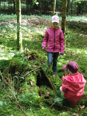 Natur reality Feenhöhle im Wald