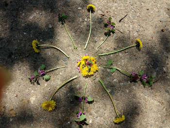 Mandalas aus Naturmaterialien bei NaturReality in Lichtenfels Franken