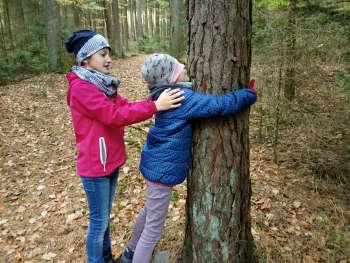 Baumfühlung im Wald mit Natur Reality Lichtenfels Franken